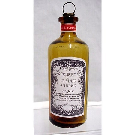 Amber Glass Pharmacy Bottle Lavender Ambree