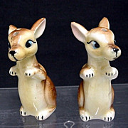 Joey Pair of Kangaroos Salt and Pepper Shakers  $17