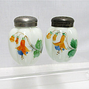 Salt and Pepper Shaker Set American Gillinder Glass 1888 - 1891