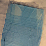 Vintage Nylon Stockings in Light Robin's Egg Blue ~ Sz 11