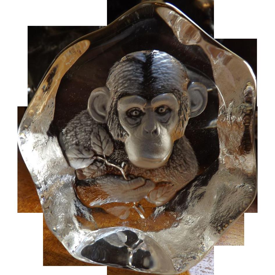 Signed Mats Jonasson Monkey Chimpanzee Art Glass Paperweight