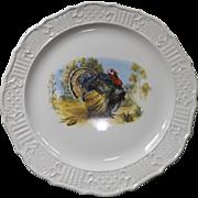 "Vintage American Traditional Ironstone 15"" Turkey Platter"