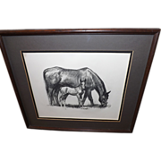 Vintage 1950's David Schwartz Photogravure Print - Mother Horse and Foal