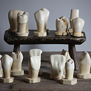 Vintage Anatomical Tooth Model Set - Dental School Teaching Aid