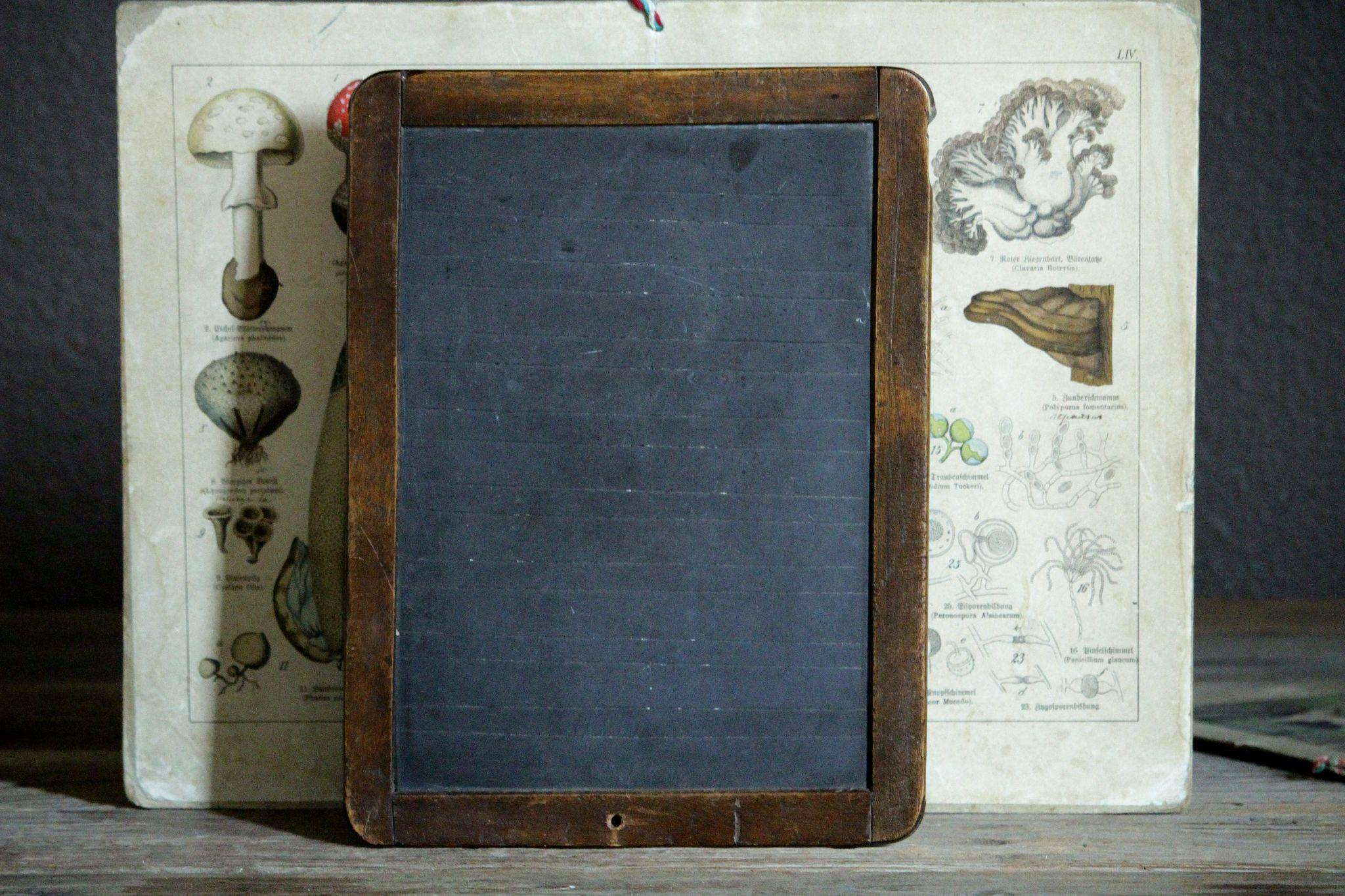 writing slate :a type of hard rock that splits easily into thin layers: a small sheet of slate in a wooden frame that was used in schools in the past for writing on with chalk: a piece of slate that is used with others to cover a roof or wall.