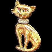 Vintage Goldtone Metal Siamese Cat Pin Clear Rhinestone Collar Red Eyes
