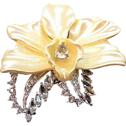 Nolan Miller Dimensional Creamy Orchid Flower Rhinestone Brooch