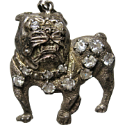 big bad Sterling 925 Crystal Bulldog Bull dog Boxer Pendant