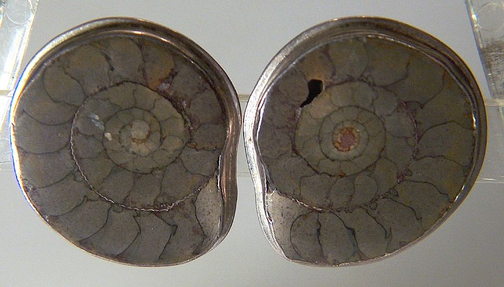 Vintage signed SW Mexico Modernist Studio Sterling Silver Ammonite Fossil Clip Earrings
