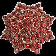 Vintage Garnet Star Brooch