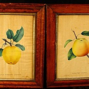 Pair of Antique Maple Frames With Dewey's Hand Colored Prints