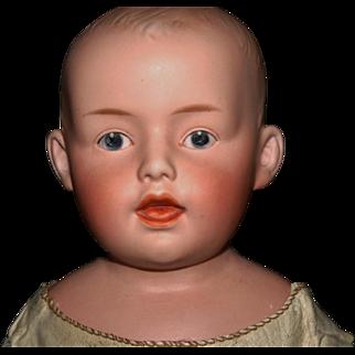 "Heubach 7530 Germany bisque shoulder head doll 20"" boy"