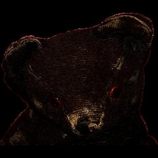 Dark Brown Antique mohair bear