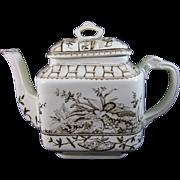 Aesthetic Brown Transferware Teapot - Moths & Foliage 1883
