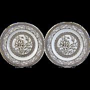 Pair Aesthetic Brown Transferware Plates - Botanical c.1883