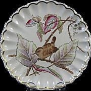 Victorian / Aesthetic Brown Transferware Plate ~ Wren 1879