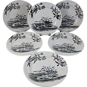 Set/6 English Victorian Black Transferware Plates - Birds 1880s