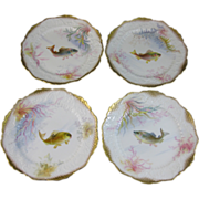Set/4 English Victorian George Jones Hand Painted Fish Plates ca. 1890