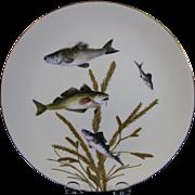 English Victorian Fish Plate #3  - Bodley - ca. 1880s