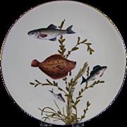 English Victorian Fish Plate #4 - Bodley - ca. 1880s