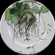 Victorian Brown Transferware Polychrome Doulton Plate - Bird & Foliage 1883