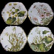 Set of 4 English Victorian Cabinet Plates - George Jones Familiar Flowers 1880s