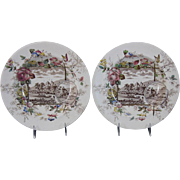 Pair Victorian Aesthetic Brown Tranferware / Polychrome Large Soup Plates 1883
