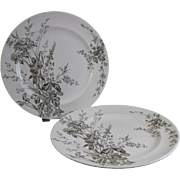 Pair Victorian Brown Transferware Plates - 1888