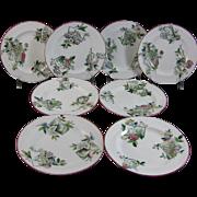 English Victorian Dessert Plate Set - 1884
