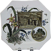 English Aesthetic Movement Transferware Plate - 1884