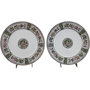 Pair of Large English Victorian Brown / Polychrome Transferware Plates - Apples ca. 1880s