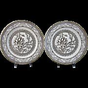 Pair Large Aesthetic Brown Transferware Plates c. 1883