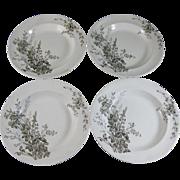 Set/4  English Victorian Brown Transferware Soup Plates c. 1888