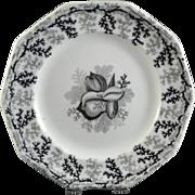Victorian English Black Mulberry Transferware Plate - Seaweed & Shells ca. 1850-60s