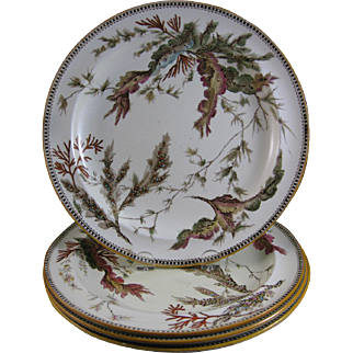 Set of 4 Wedgwood Brown Transferware / Polychrome Large Plates - Seaweed ca. 1860s