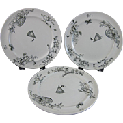 Trio English Victorian Aesthetic Movement Transferware Plates - ca. 1860-70s