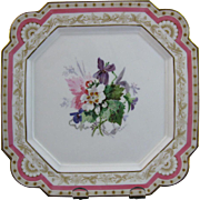 Gorgeous English Aesthetic Movement Hand Painted Cabinet Plate - 1881