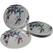 Set / 6 Victorian Staffordshire Polychrome Transferware Large Plates - Birds 1878