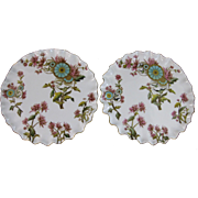 Pair Aesthetic Victorian Polychrome Transferware Cabinet Plates ca. 1883