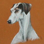 Painting of a Saluki dog...Saluki dog....