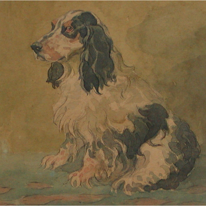Spaniel dog...Watercolor of a Spaniel dog....