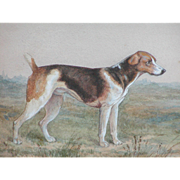 Painting of a dog...Watercolor painting of a dog...Dog painting...
