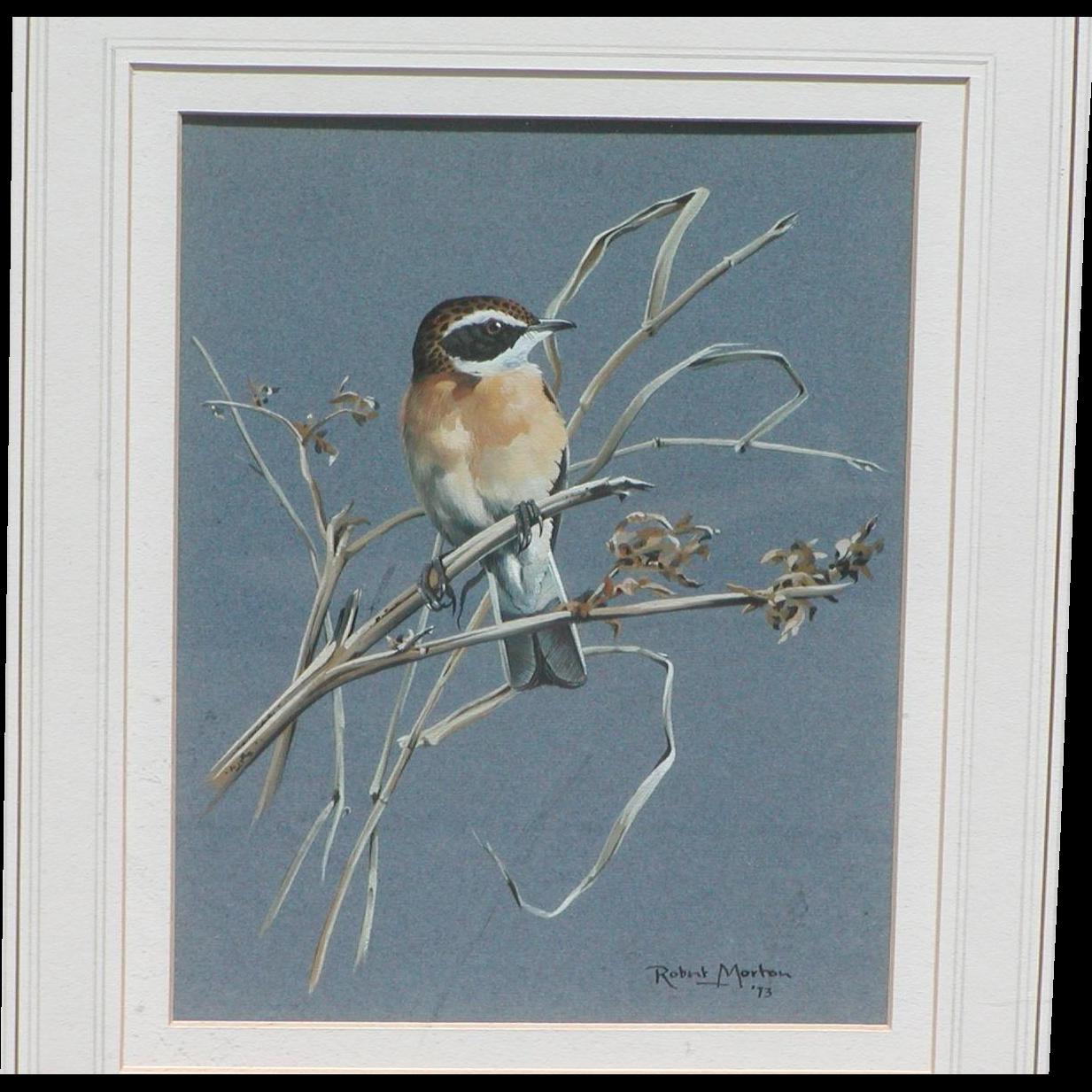 Painting of a bird...Wild bird painting...Bird painting...