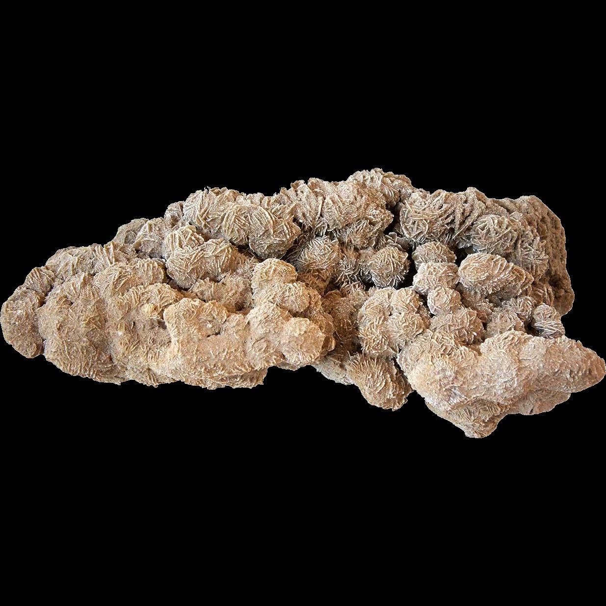 Very Large Selenite Desert Rose Crystal Cluster Rock Formation