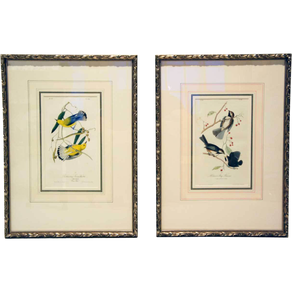 Pair of JOHN JAMES AUDUBON Hand Colored Lithograph Bird Prints - Original