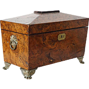 English Regency Brass Mounted Burl Yew Wood Tea Caddy