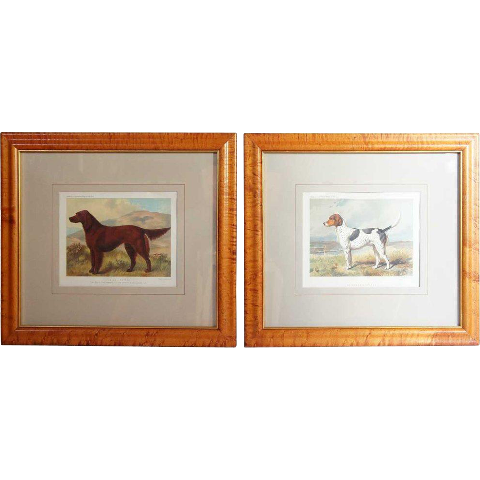 After VERO SHAW, Cassell's, Pair of Dog Portrait Chromolithographs