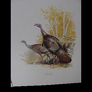 Field and Stream Portfolio of Game Birds by Ned Smith
