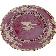 Spode Bone China Dinner Plate, Rose Background, Gold Bird & Flowers