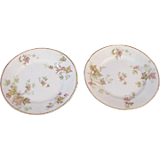 Haviland, France, Autumn Leaf Bread and Butter Plates, Pair